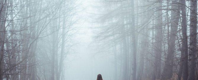 Illustration article Skillup - forêt embrumée